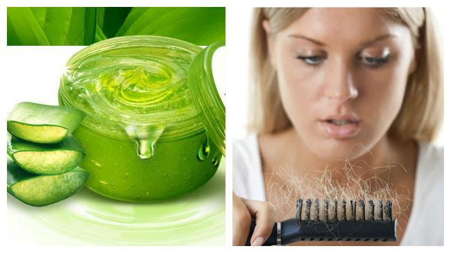 como aplicar sabila en el cabello