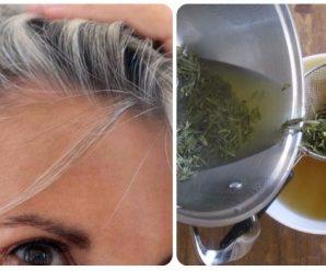 Tratamiento de romero para el cabello