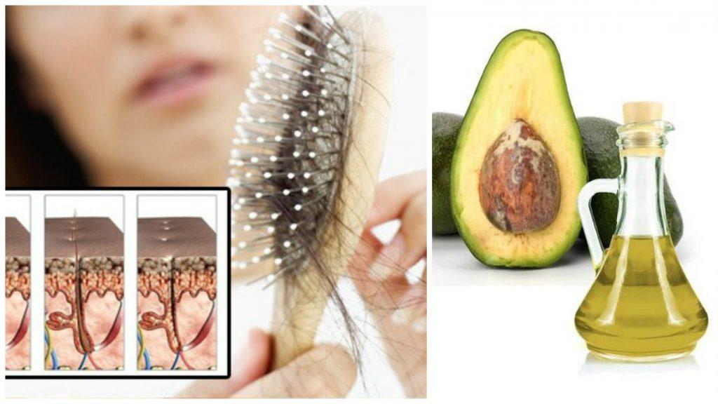 Aceite de aguacate para la caída del cabello