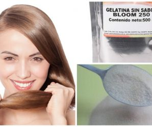 Tratamiento de GELATINA para fortalecer el cabello