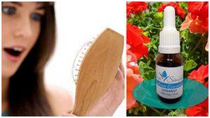 Evitar la caída del cabello con aceite de Geranio