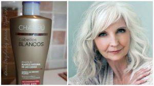 shampoo para cabello canoso