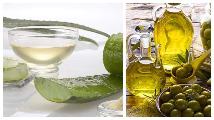 sábila y aceite de oliva para el cabello