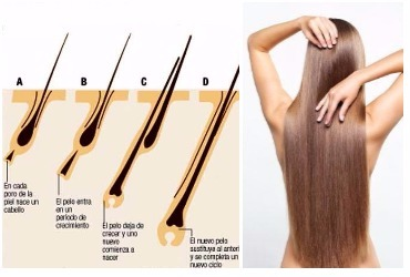 Crecimiento de cabello